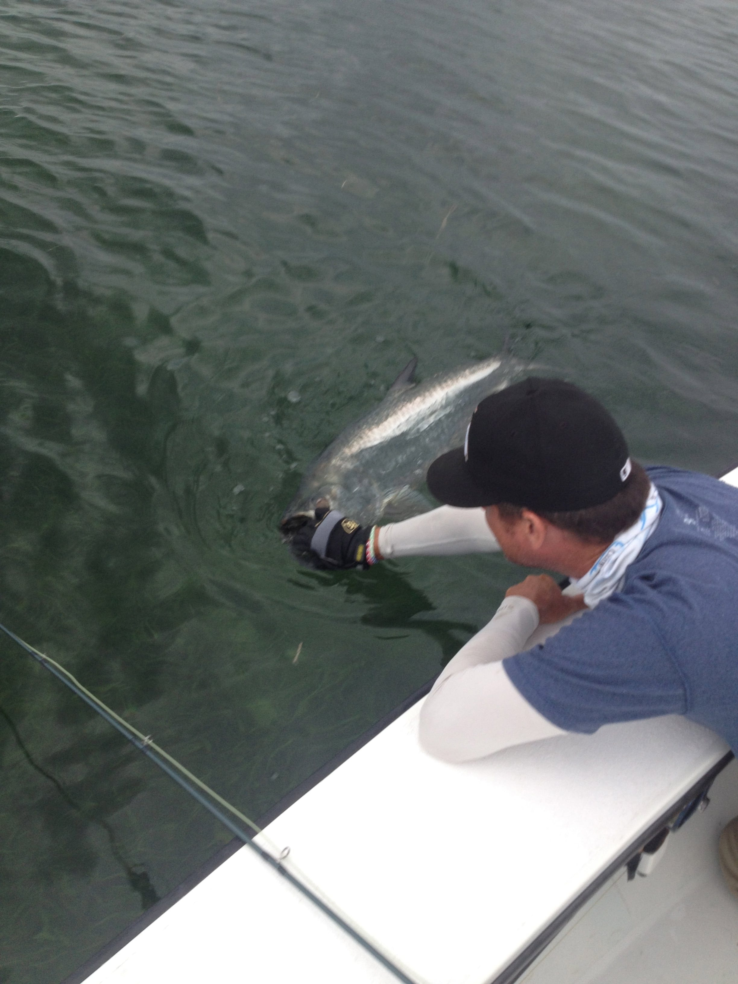 John O'Hearn gets the release proper from a small tarpon in August. Photo Nathaniel Linville, guiding John O'Hearn.