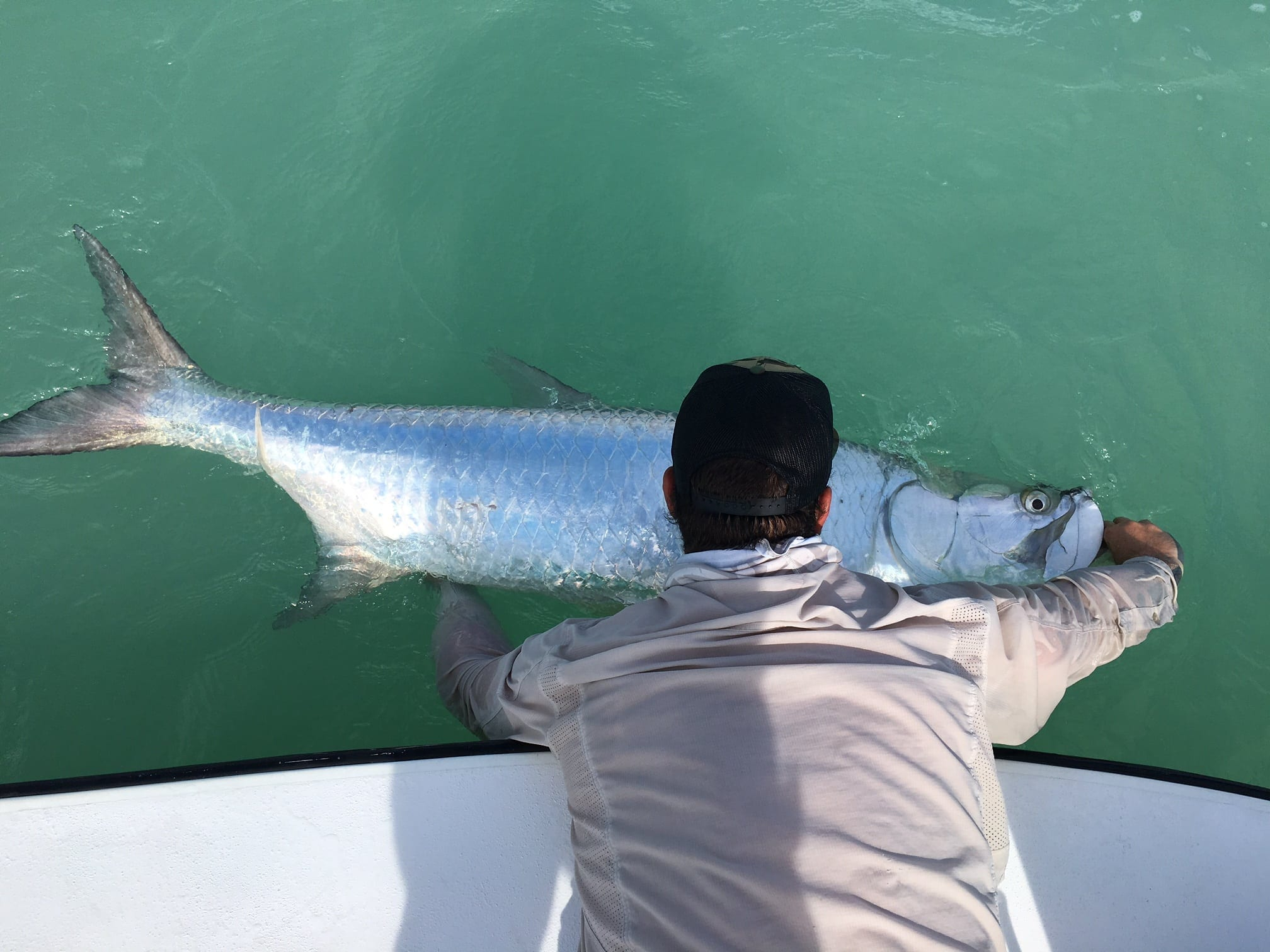 A large tarpon to finish the day and a cool photo to cap it off. Photo/guiding John O'Hearn