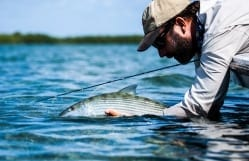 Another bonefish, prefishing for the Del. Photo/guiding Captain Aaron Snell