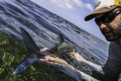 A nice different perspective from Aaron Snell and a compliant bonefish. Superfly, 2014