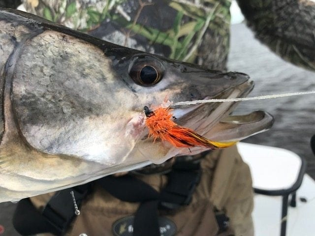 A close up of the RTC. Fly+guiding+photo=Chad Huff