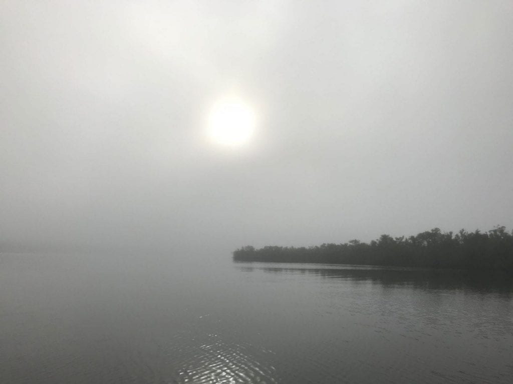The fog on day 2 of an Everglades trip was pretty, if distracting. Chad Huff guiding/photo