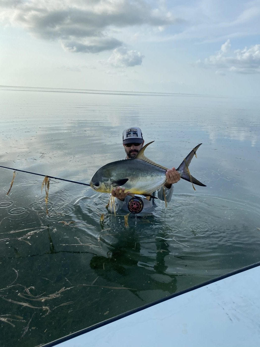 A grass-fed sickle fish, caught after losing a monster. Photo/guiding Nick Labadie